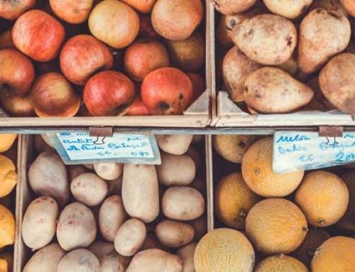 Diseño de un sistema integrado basado en programas de gestión de calidad e inocuidad para la industria de alimentos procesados en Costa Rica