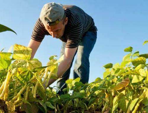 Programa de Formación en Gestión del Riesgo Agroclimático