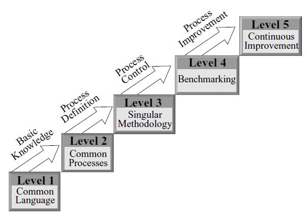 Niveles madurez en gestión de proyectos