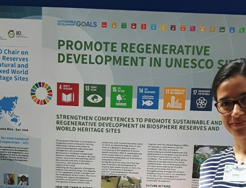 Movilizando las Cátedras UNESCO en Ciencias Naturales para la acción hacia la Agenda 2030