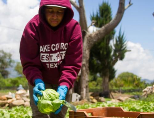 Día del Agricultor y Agricultora Costarricense